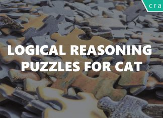 logical reasoning puzzles for cat