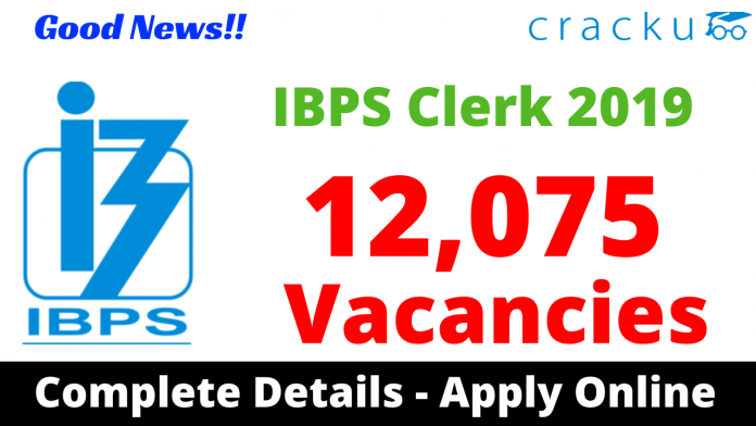 IBPS Clerk Notification 2019 PDF