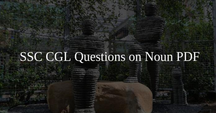 SSC CGL Questions on Noun PDF