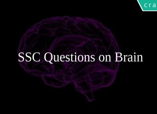 SSC Questions on Brain