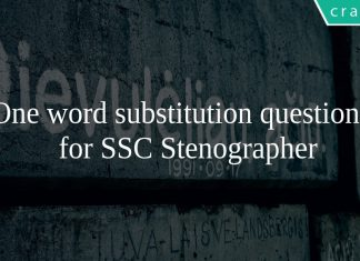 One word substitution questions for SSC Stenographer