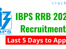Last 5 Days to Apply for IBPS RRB Recruitment 2021