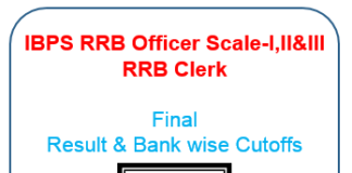 IBPS RRB Final Cutoff & result officer Scale 1,2&3 & Clerk
