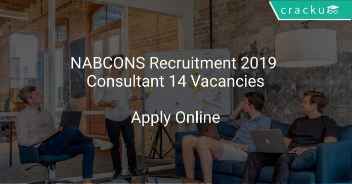 NABCONS Recruitment 2019 Consultant 14 Vacancies
