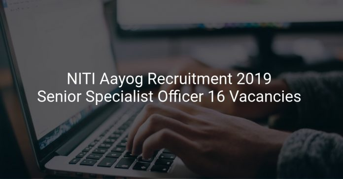 NITI Aayog Recruitment 2019 Senior Specialist Officer 16 Vacancies