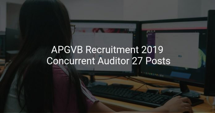 APGVB Recruitment 2019 Concurrent Auditor 27 Posts