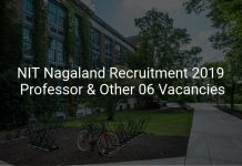 NIT Nagaland Recruitment 2019
