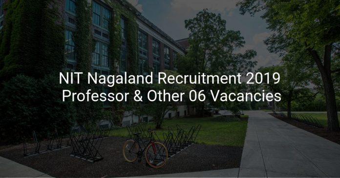NIT Nagaland Recruitment 2019