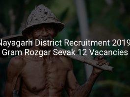 Nayagarh District Recruitment 2019