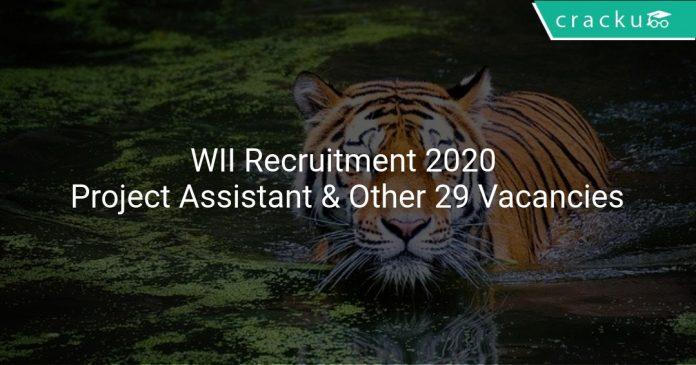 WII Recruitment 2020