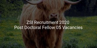 ZSI Recruitment 2020