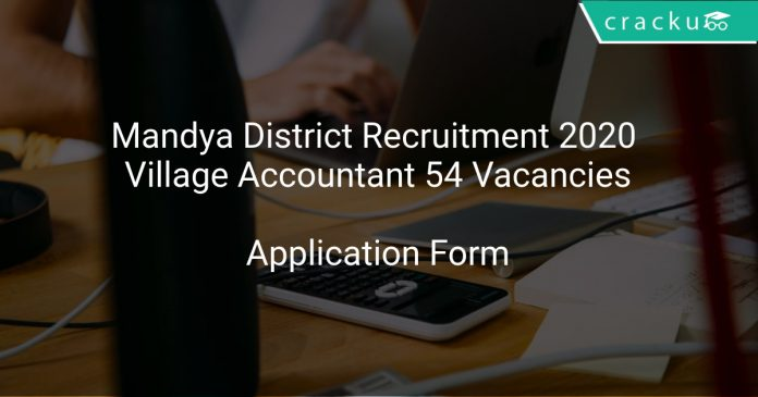 Mandya District Recruitment 2020 Village Accountant 54 Vacancies