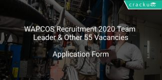 WAPCOS Recruitment 2020 Team Leader & Other 55 Vacancies