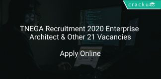 TNEGA Recruitment 2020 Enterprise Architect & Other 21 Vacancies
